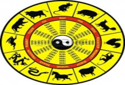 What Can You Learn From Chinese Horoscopes?