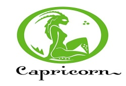 Capricorn Female Traits